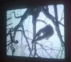 Treehousematta