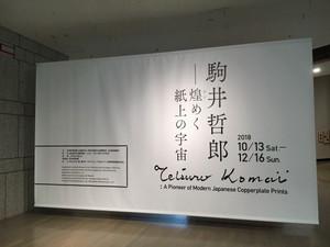 Komaitetsuro_yokobi_20181012_105s